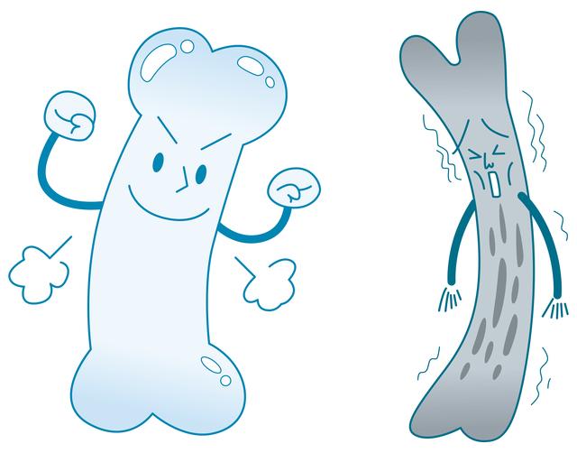 骨粗鬆症が圧迫骨折の主原因。加齢で骨はもろくなるの?/圧迫骨折