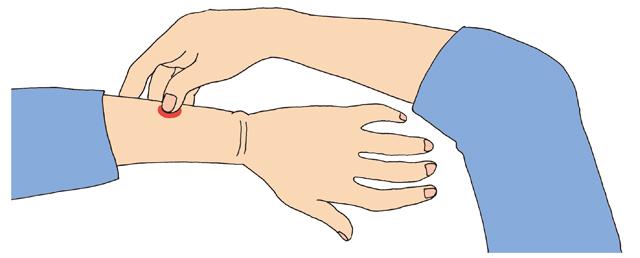 爪が骨に当たるのを感じて!「小指側の手首」の10秒神経マッサージ