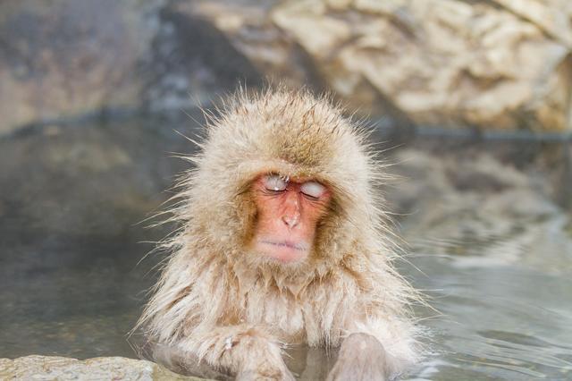 入浴は1日2~3回まで。プロに聞く正しい温泉の入り方/入浴習慣