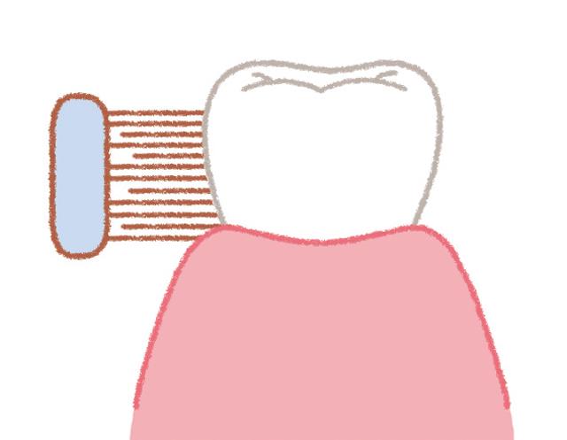 正しい歯磨き、できていますか? 歯磨きの基本を再確認!/口と歯