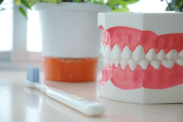 歯周病は日本人の「歯を失う理由」第1位! その原因は?/歯周病(1)