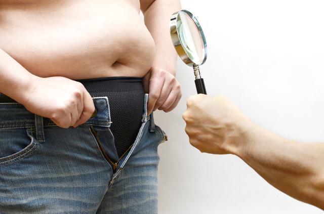 溜め込まれた脂肪が山のように。「肥満」は万病のもと!/やさしい家庭の医学