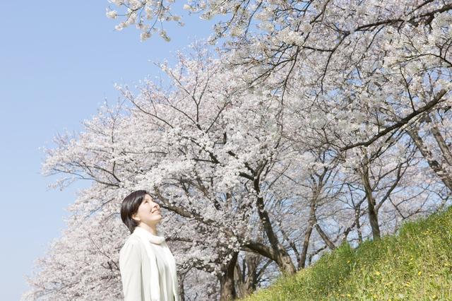 「こんなに美しいものだったんだ・・・」48歳で乳がん、闘病を支えてくれた娘の卒業式で見た桜