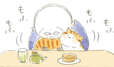 【本日映画公開!】猫の冬毛~ねことじいちゃん ほっこり癒される猫との暮らし(49)【連載】