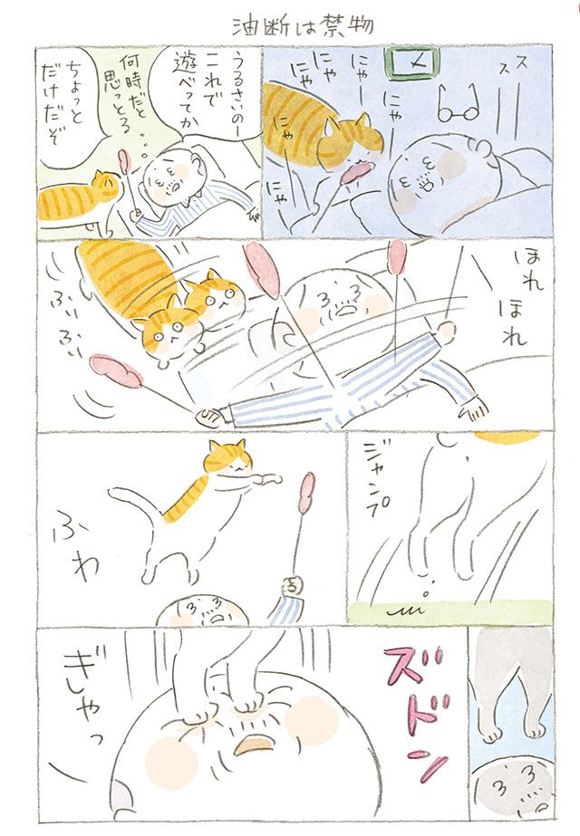暗闇でタマと遊んだじいちゃんの悲劇...「油断は禁物」【ほっこりマンガ】ねことじいちゃん(第58回)