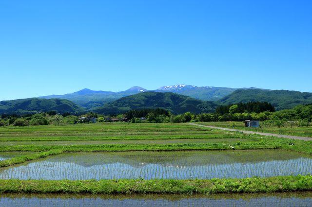 地元・福島への愛を歌に詠む/伊藤先生の短歌の時間