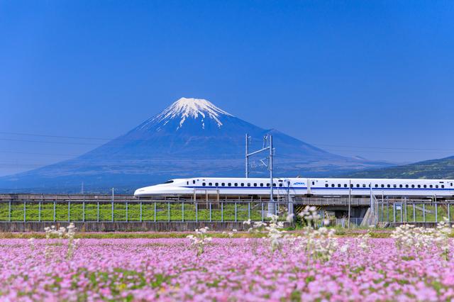 【日本史豆知識】オリンピック前にギリギリ・・・完成!「新幹線」の開業秘話