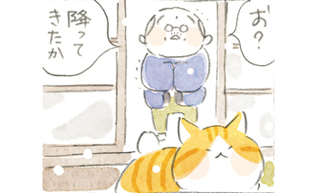 【ほっこり猫マンガ】寒いのにパトロール...行くの⁉/ねことじいちゃん(第61回)