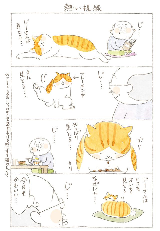 2006_p127_01.jpg