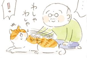 「しつこい」大吉じいちゃんに、猫のタマがついに...⁉/ねことじいちゃん(第68回)