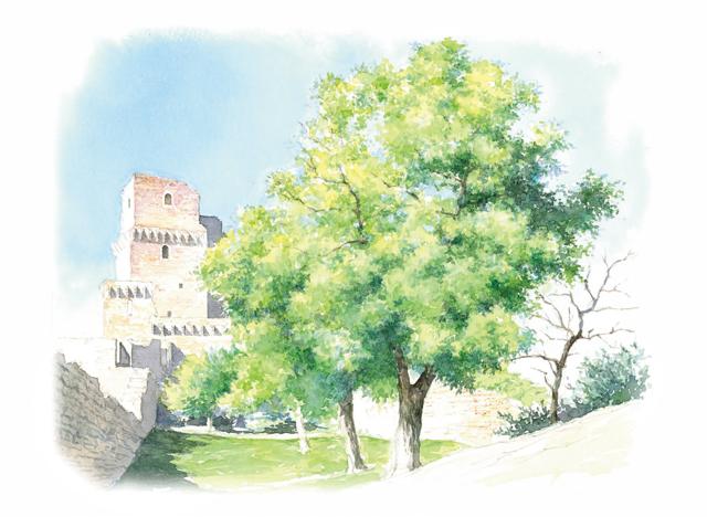 「プレバト!!」出演、画家・野村重存さん直伝! 鉛筆スケッチで描く「古城と新緑の木」入門編
