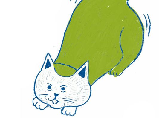 飼い主のちょっとした気遣いで健康は守れます。「猫をがんから守る生活習慣」/家ねこ大全(40)