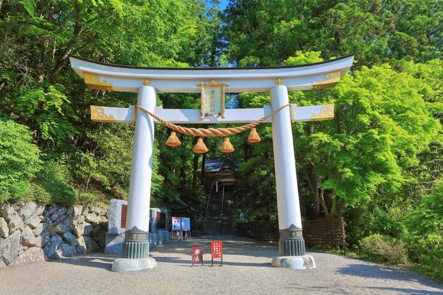 1分間英語でTokyo案内「どの神社にも鳥居があるの?」