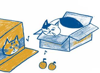 ご存じですか? 猫が「段ボールの中に入っちゃう」理由/家ねこ大全(2)