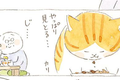 タマが感じる...大吉じぃちゃんの「熱い視線」/ねことじいちゃん(第65回)