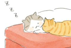 「猫待ちです」~ ねことじいちゃん ほっこり癒される猫との暮らし(32)【連載】