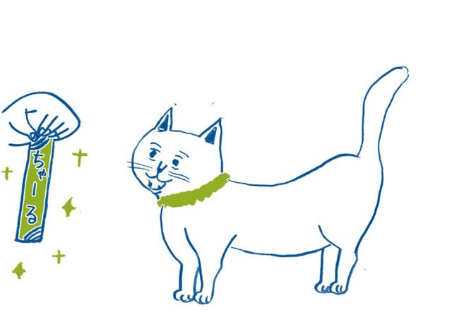 与え方を間違うと「肥満猫」に...⁉ 獣医師が教える「猫のおやつのあげ方」/家ねこ大全(12)