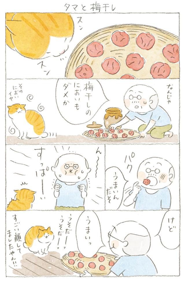 1907p135_ねことじいちゃん.jpg