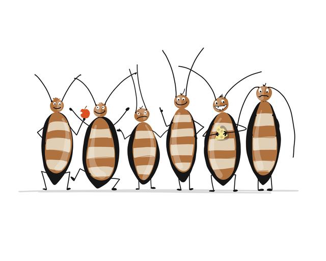 ゴキブリはオスがいなくても繁殖する!?/地球の雑学