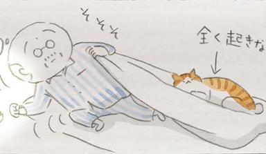 ふたりの毎日~ねことじいちゃん ほっこり癒される猫との暮らし(45)