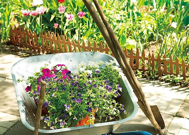 いよいよ春。環境にもお財布にもエコな「植物の病害虫対策」教えます