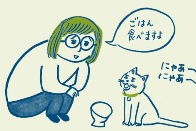 13歳を過ぎたら可能性あり⁉ 猫にも「認知症」があるってホント?/家ねこ大全(38)