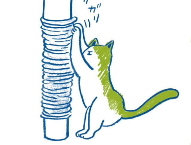 猫に長生きしてもらうには...? ご長寿猫の飼い主に共通する「7つのポイント」/家ねこ大全(37)