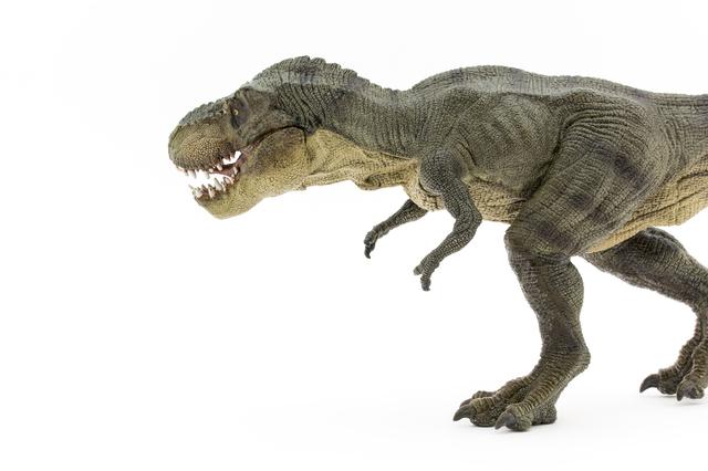 恐竜の王者ティラノサウルスは俊足ではなかった !?/地球の雑学