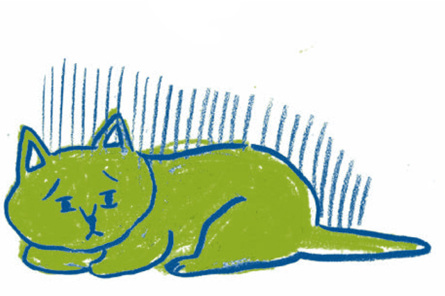 飼い主や同居猫の「ロス」をきっかけに...。「猫もうつになる」って本当?/家ねこ大全(36)