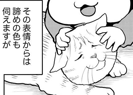 カワイイネエ!娘から猫へ、少し乱暴な愛情表現/タレ目猫そむ(6)