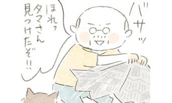 タマじゃない!あんたどこの子?【ほっこりマンガ】ねことじいちゃん(第56回)