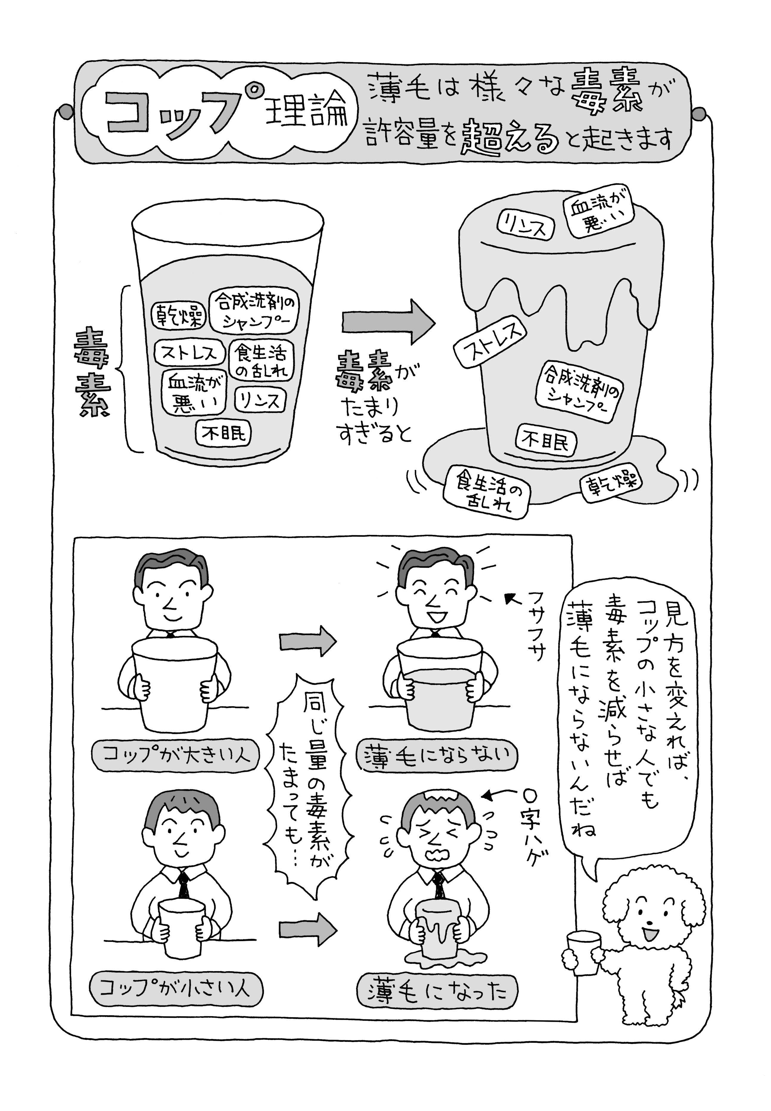 017-004-081.jpg