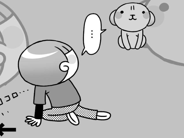「どうしろと・・・?」うちのトイプとボール遊び/犬のおしりにしかれてます。(14)