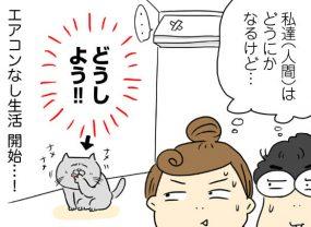 エアコン故障! 人間はまだしも愛娘(猫)のピンチ/山本ありの電気なし生活3【休日昼編】