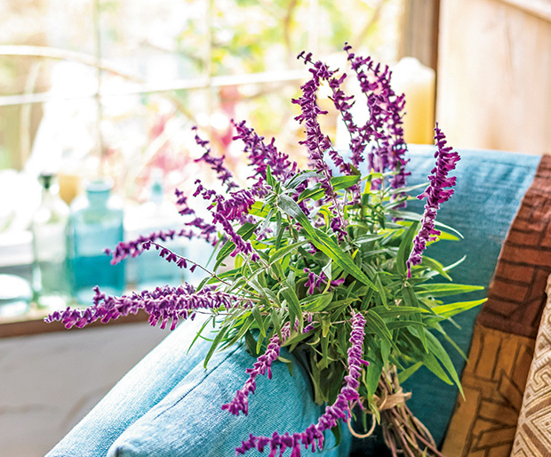 両手いっぱいのアメジスト色の花束で、心が温まる2月を過ごす。/暮らしの晴れ間