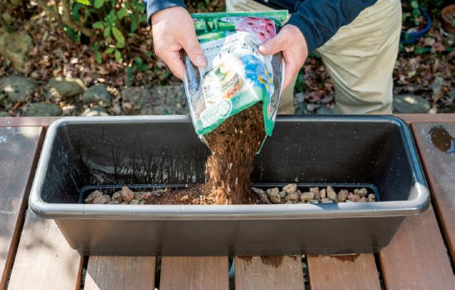 必要な園芸用品から野菜の栽培方法まで! 100円ショップでそろえて「プランター菜園」【まとめ】