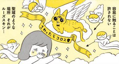 グッドデザイン賞をあげたい!やっちゃんの聖域ルーズスキン/茶トラのやっちゃん(5)