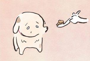食べなくなって...ゆるんだお餅みたいになっていくオカメ。やりきれなくて.../いとしのオカメ(8)