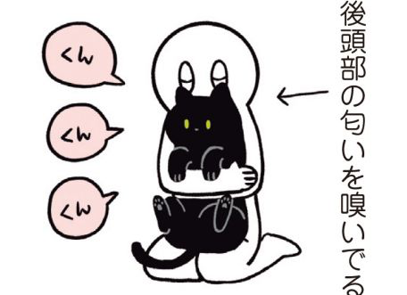 猫を吸う。吸い過ぎて怒られる。でも怒って行ったところは...!/黒猫ろんと暮らしたら
