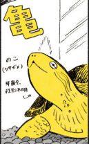 えっ?まさか...?亀ののこちゃんと仲良しだと思っていたのに...! /茶トラのやっちゃん(10)