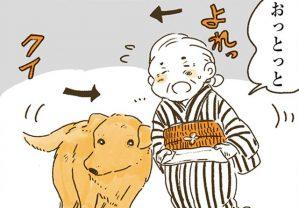 お互いに支え合う凸凹コンビ。犬のナイトとばあちゃんは今日も仲良し/姫ばあちゃんとナイト (3)