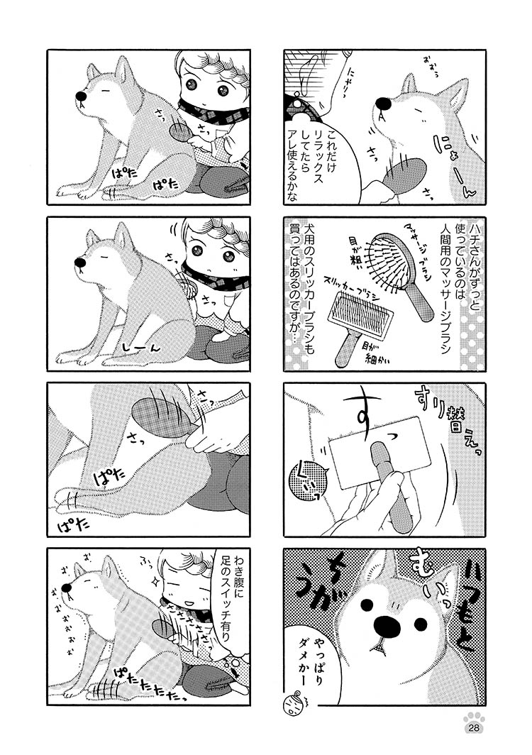 jijishiba_P028.jpeg