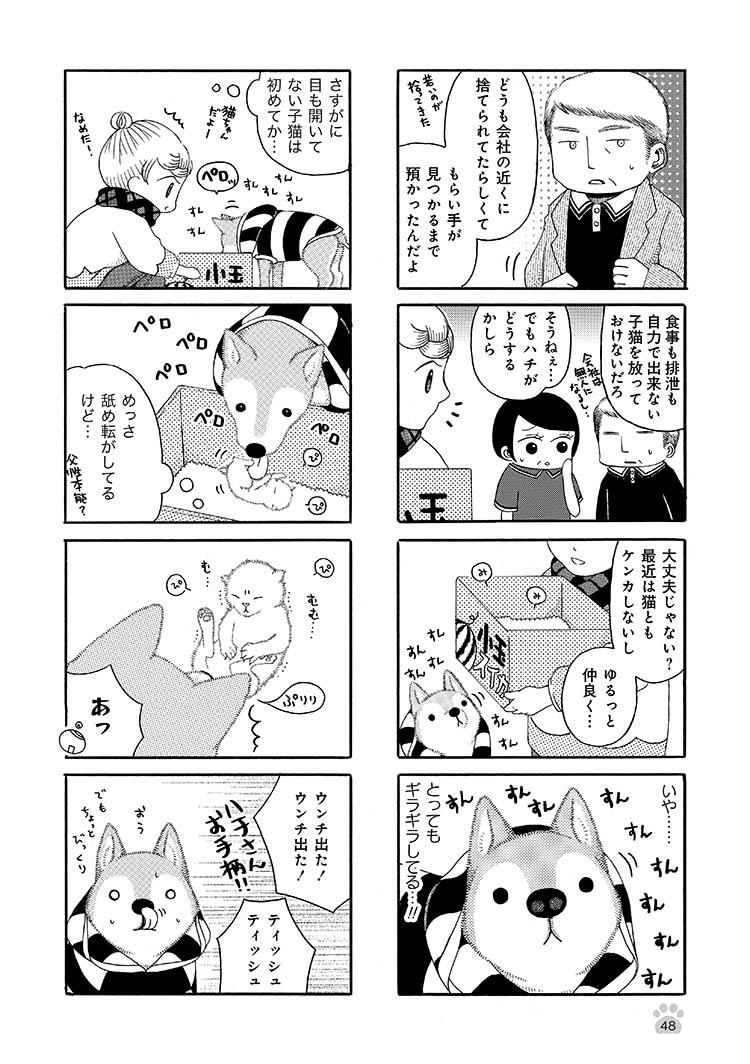jijishiba_P048.jpeg
