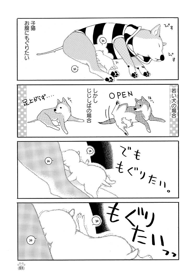 jijishiba_P051.jpeg