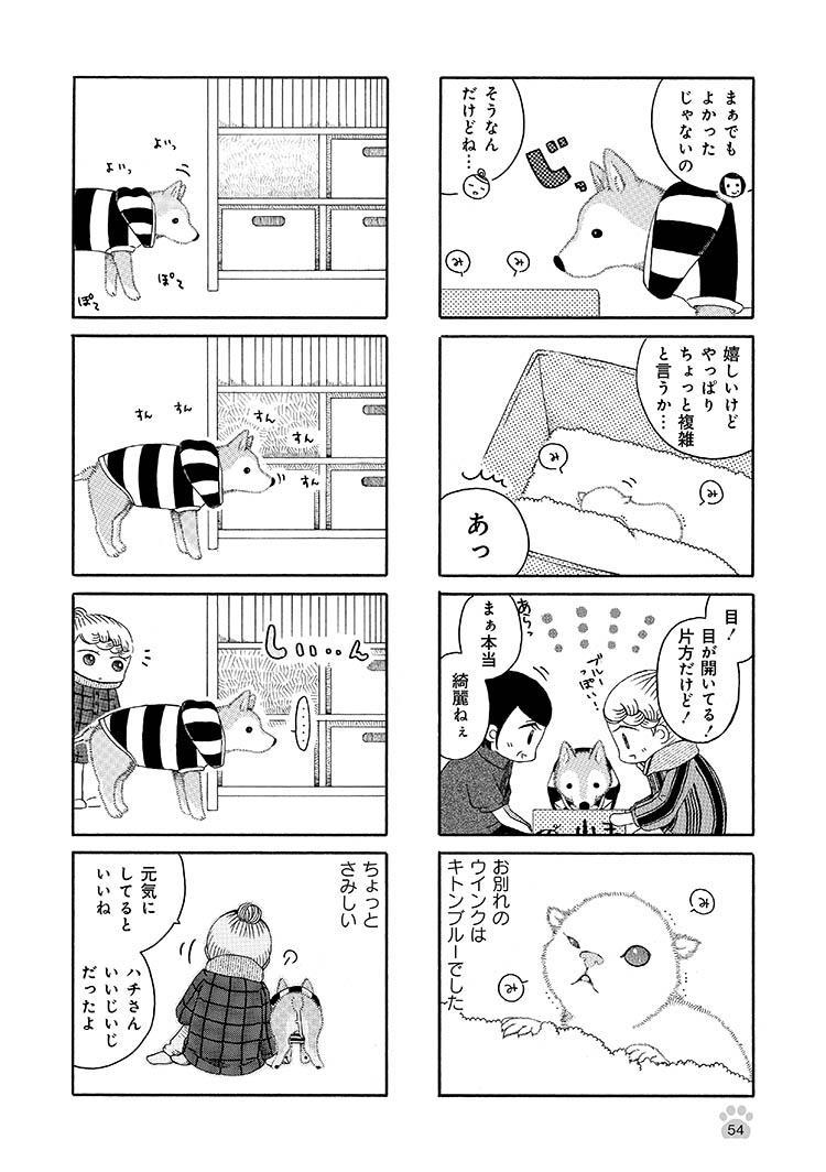 jijishiba_P054.jpeg