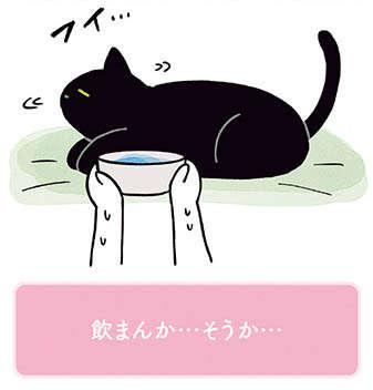 猫の甘えか怠惰か。水は自分で飲んでほしい.../黒猫ろんと暮らしたら2(6)