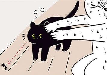 黒猫ろんvsムカデ! やめて〜! 私が退治するから〜!/黒猫ろんと暮らしたら2(7)