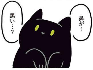 え? 猫の鼻の色って...? ねこ初心者が驚いた、お猫さまの個性/黒猫ろんと暮らしたら2(8)