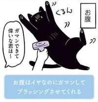 黒猫ろんにブラッシング。「どうぞ」とやらせてくれるが、一カ所だけ.../黒猫ろんと暮らしたら2(9)