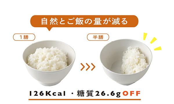 yasai-1.jpg